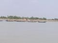 Sundarbans04