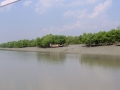 Sundarbans05