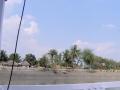 Sundarbans08