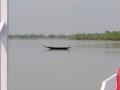 Sundarbans10